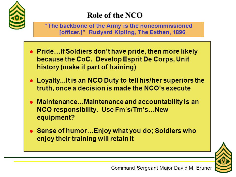 the responsibilities of an nco accountability Home quartermaster documents and training manuals   part a: petroleum accountability  as a senior nco in a  unit's specific operations and mission.